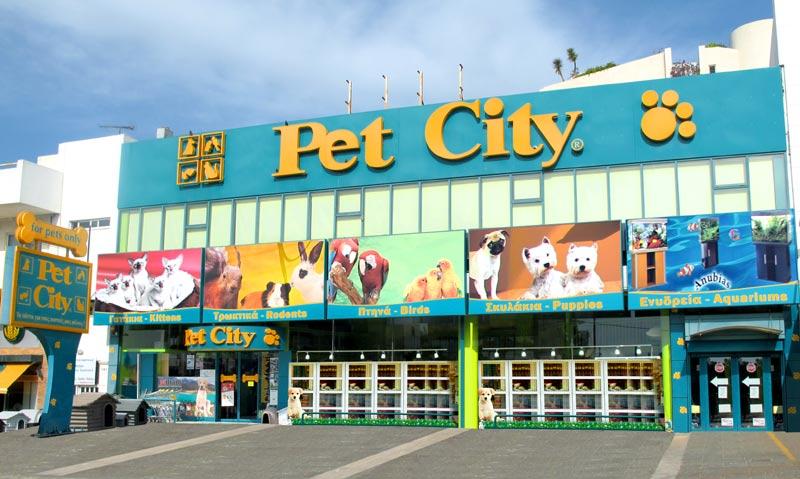 PET CITY: Τα πάντα για τα κατοικίδια στο κορυφαίο brand της αγοράς